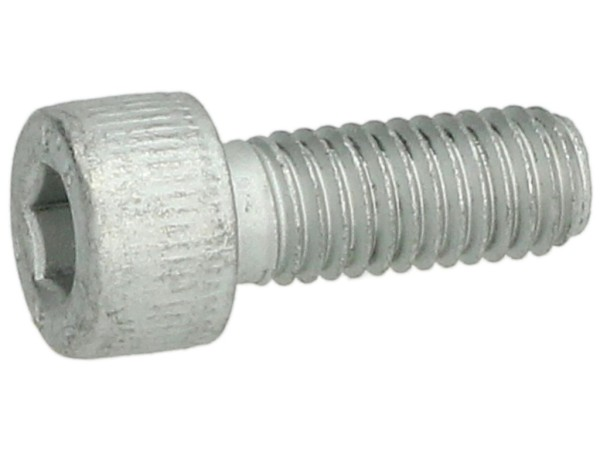 Schraube M8 x 20mm (Art. Nr. 599009)
